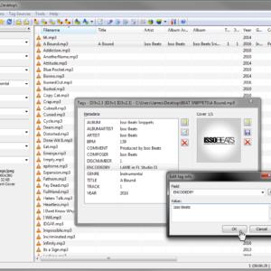 Edit mp3 files ID3 tags: screenshot 7